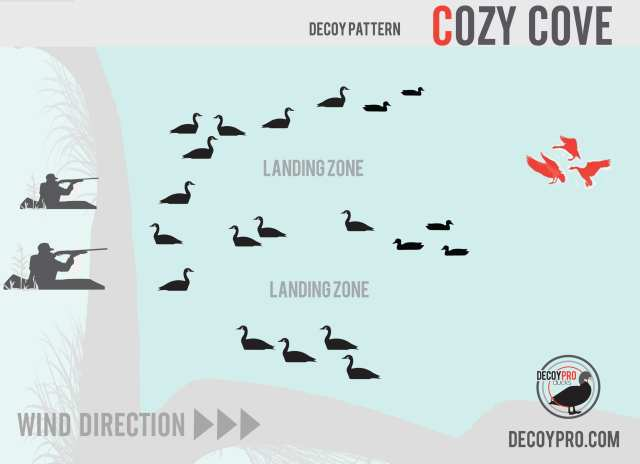 Goose decoy spread for water
