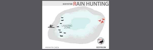 Duck Hunting In The Rain: Do Ducks Fly in The Rain?