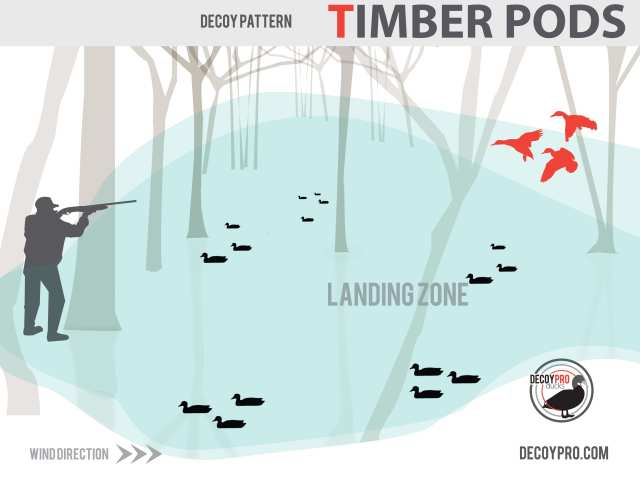 How to Duck Hunt Flooded Timber