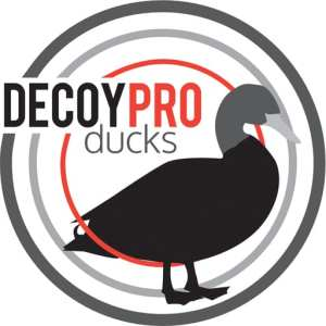 best duck hunting app