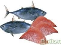 tunec-ryba