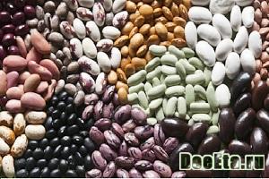 fasolevaya-dieta