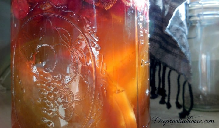 Beginner's Guide To Kombucha ~Make Your Own, DIY, keeper of the home, healing remedies, health benefits, natural medicine chest, the old ways, scoby, symbiotic colony of bacteria and yeast, white sugar, tea bags, fermentation, fermenting, raw, probiotic,restoring the gut, black tea, brewing kombucha, organic sugar,