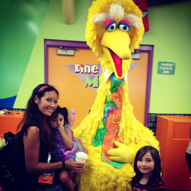 sesame place big bird
