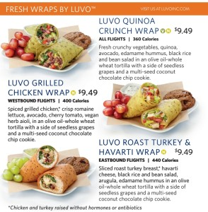 free luvo food on JFK Economy Comfort Delta