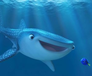 Box Office Wrap Up:  Dory finds Top Spot Again