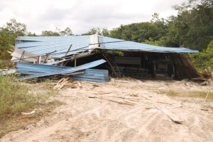The shed that collapsed over other components of a wood veneer plant after sections were seized by agents of the Guyana Revenue Authority (GRA).