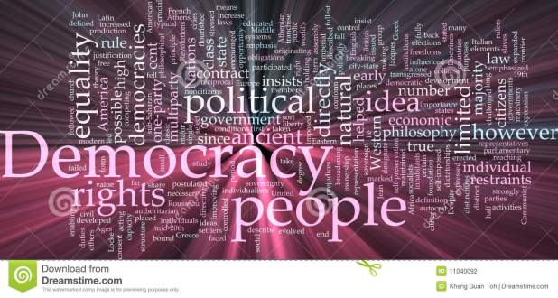 هل تمثّل شبكات التواصل الإجتماعية وحتى الصحافيين خطرا على الديمقراطية المباشرة؟