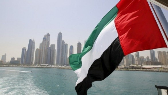 وزير الدولة الإماراتي يدعو لمراقبة دولية وحل إقليمي لأزمة قطر