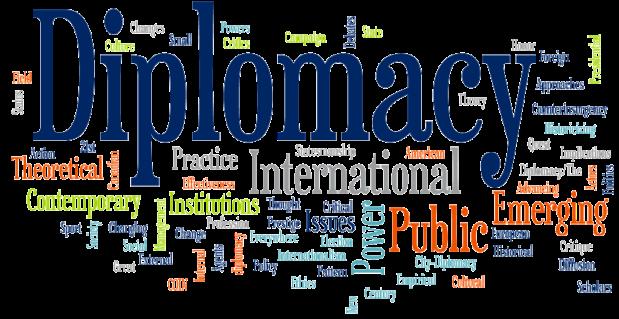 دورة في الدبلوماسية والعلاقات الدولية في تركيا