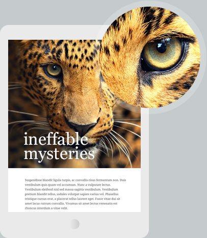 Homepage org