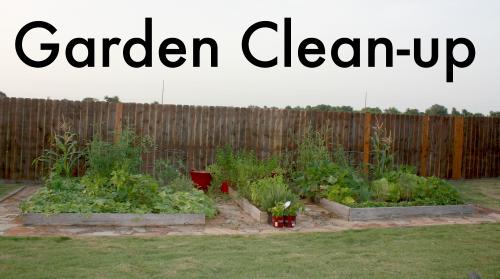 Garden Clean-up