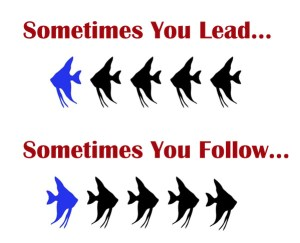 lead-follow
