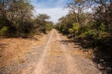 more-farm-tracks-actually-ruta-39