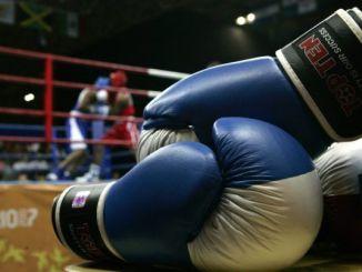 kragbokser-boxeo-boxing-gloves