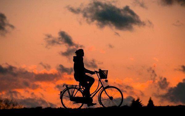 Beneficios del Ejercicio Físico para Prevenir el Estrés