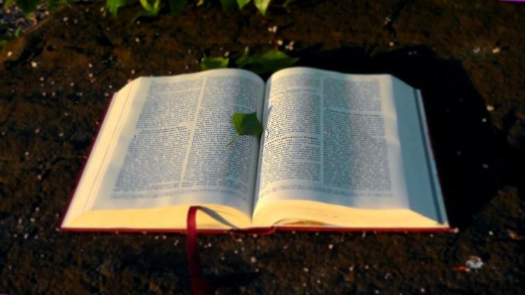 Mega alt: In diesem Buch lässt sich die Geschichte über Jesus nachlesen.