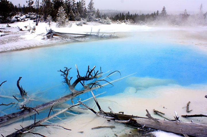 Siliceous Hot Spring, Yellowstone National Park