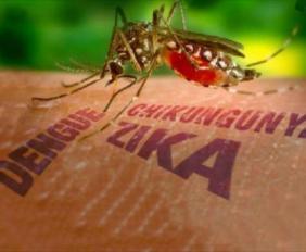 como-protegerse-del-virus-zika