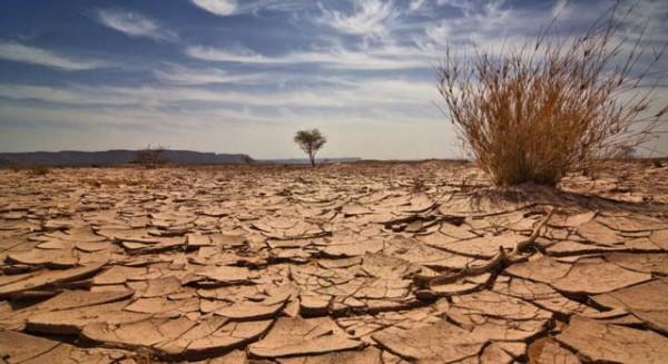 O uso da terra e as mudanças climáticas