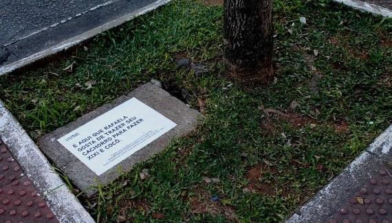 Intervenção urbana no centro de Florianópolis revela o cotidiano da população