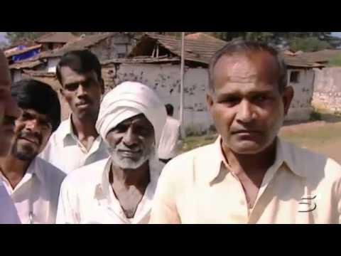 Monsanto perde milhões na Índia pois agricultores estão plantando algodão orgânico