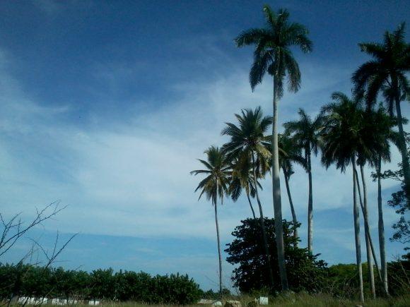 Paisagem em Jatibonico. Foto: Sandiel Carriles / Cubadebate