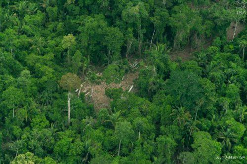Área utilizada por madeireiros ilegais na TI Cachoeira Seca | Juan Doblas - ISA