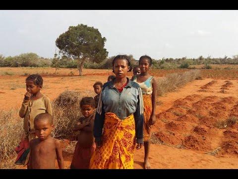 Vídeo: seca em Madagascar deixa 1,4 milhão de pessoas passando fome