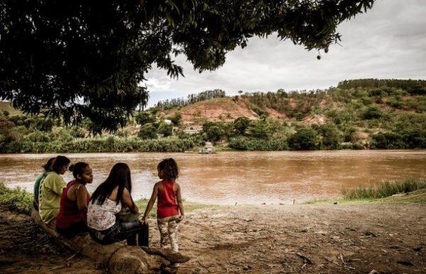 Nota do MAB sobre a Febre Amarela em Minas Gerais