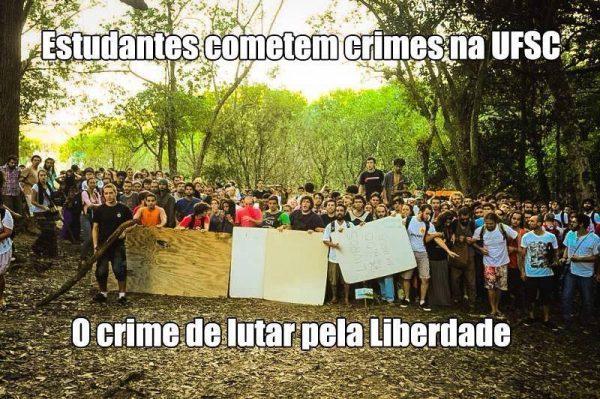 Florianópolis: O silêncio do bosque