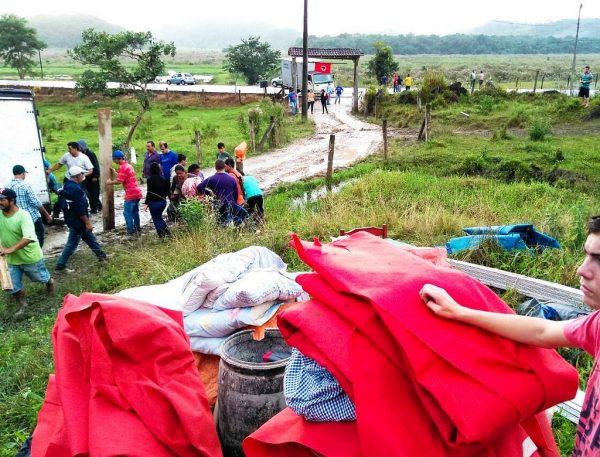 Novas ocupações despertam Santa Catarina