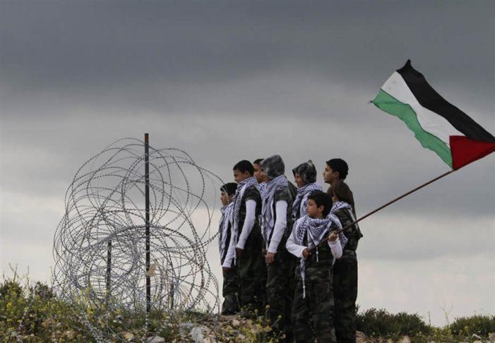 A Palestina clama por uma solução