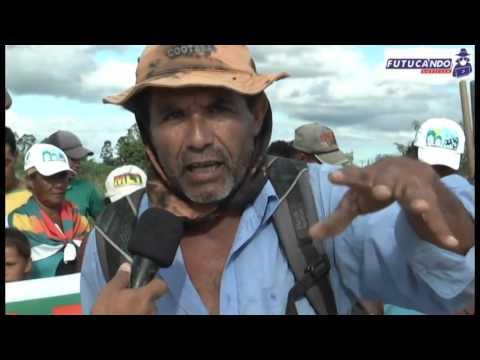 Impactos da Veracel Celulose no Extremo Sul da Bahia