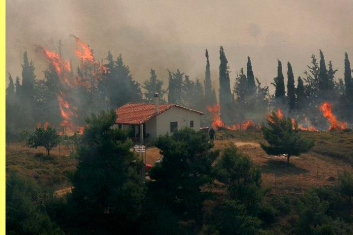 Portugal devastado: rotina ou terrorismo?