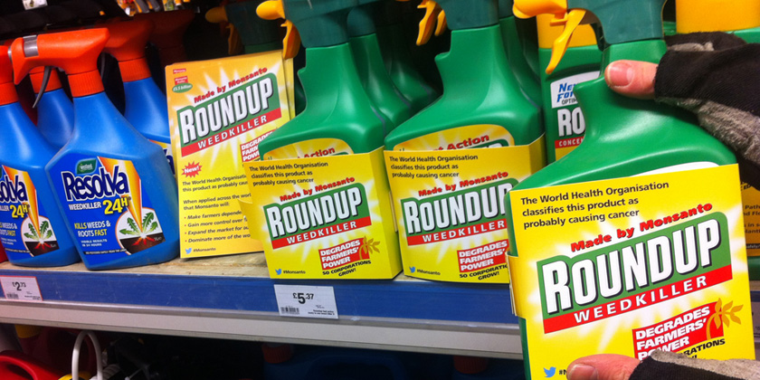 Pesticide glyphosate disrupts uterine development