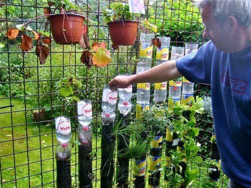 Medium Of You Tube Container Gardening