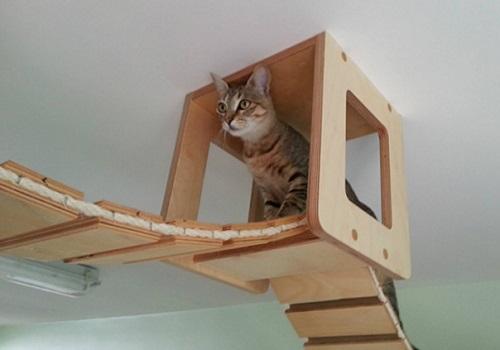 id es pour fabriquer un arbre chat maison des hommes. Black Bedroom Furniture Sets. Home Design Ideas