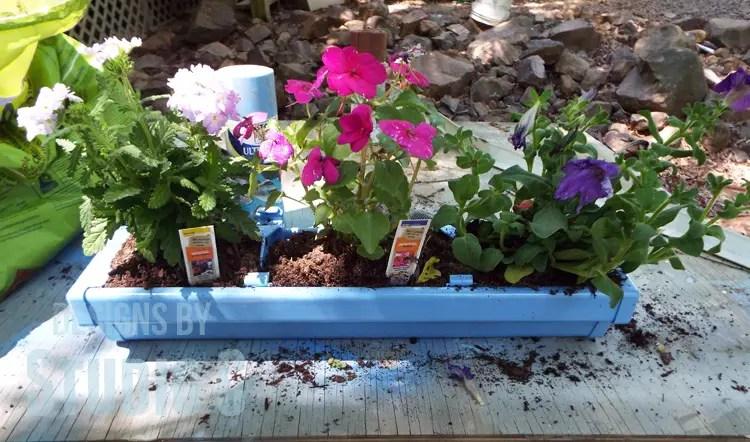 DIY Rain Gutter Planter - Plants