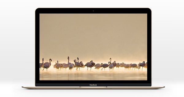 06 New MacBook Psd Mockup