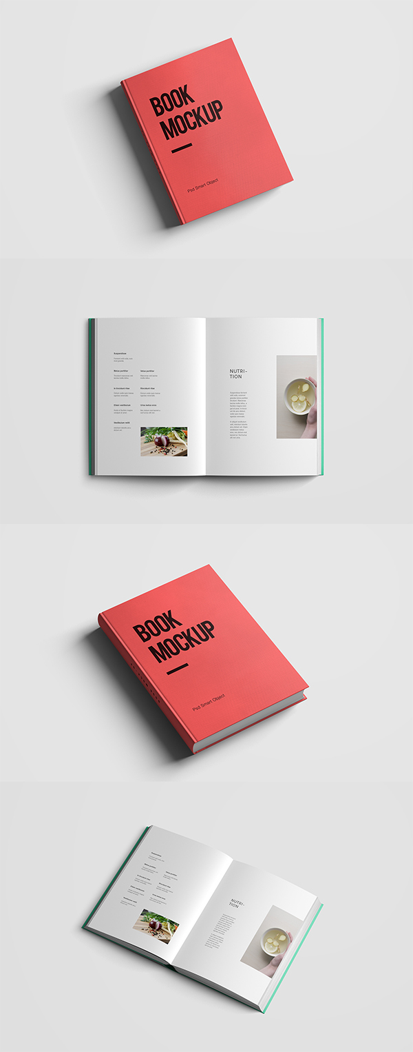 10 Free Book Mockup