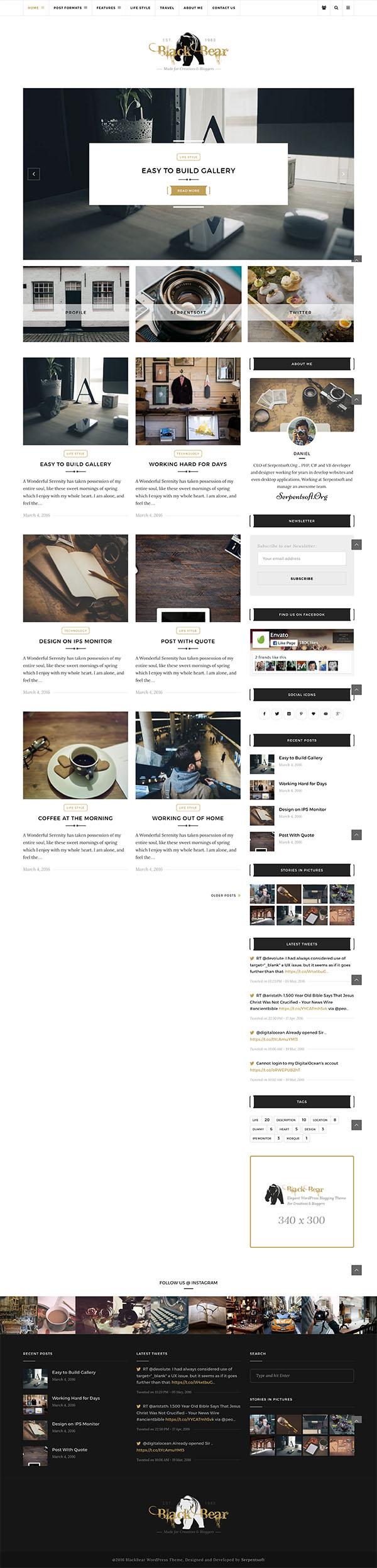 14 Black Bear - Responsive WordPress Blog Theme