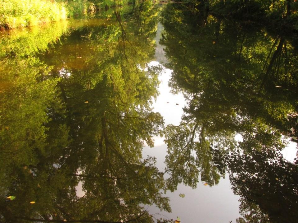 Река Дряновска - отражения при бента 1