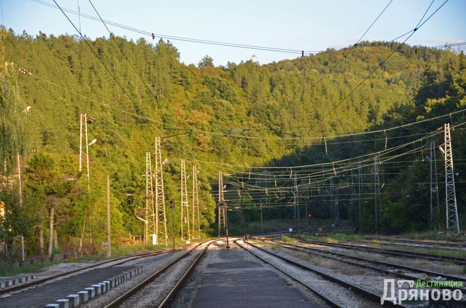 Всички железопътни линии водят към Царева ливада... :)