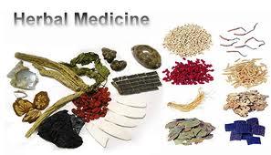 Kumpulan Artikel Obat Herbal Tradisional