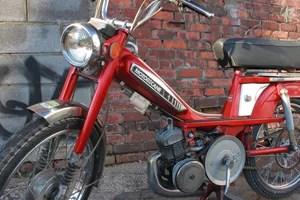 shop_mopeds