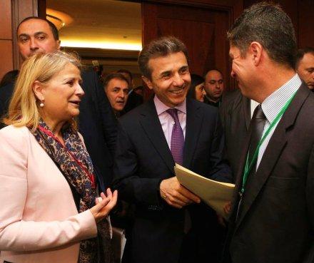 bidzina ivanishvili - NATO PA Rose Roth Seminar
