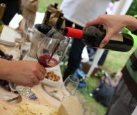 wine_festival_sighnaghi_Crop