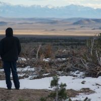 Pinyon-Juniper Forests: BLM's False Claims to Virtue