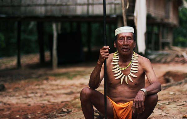 Many contacted Matsés have expressed opposition to any efforts to contact their uncontacted neighbors, or to explore for oil in their territory. © Survival International